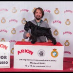 UZI LATOYA DEL CASA DI VITA: Mejor Cachorro en Exposición Internacional de Martorell 2015