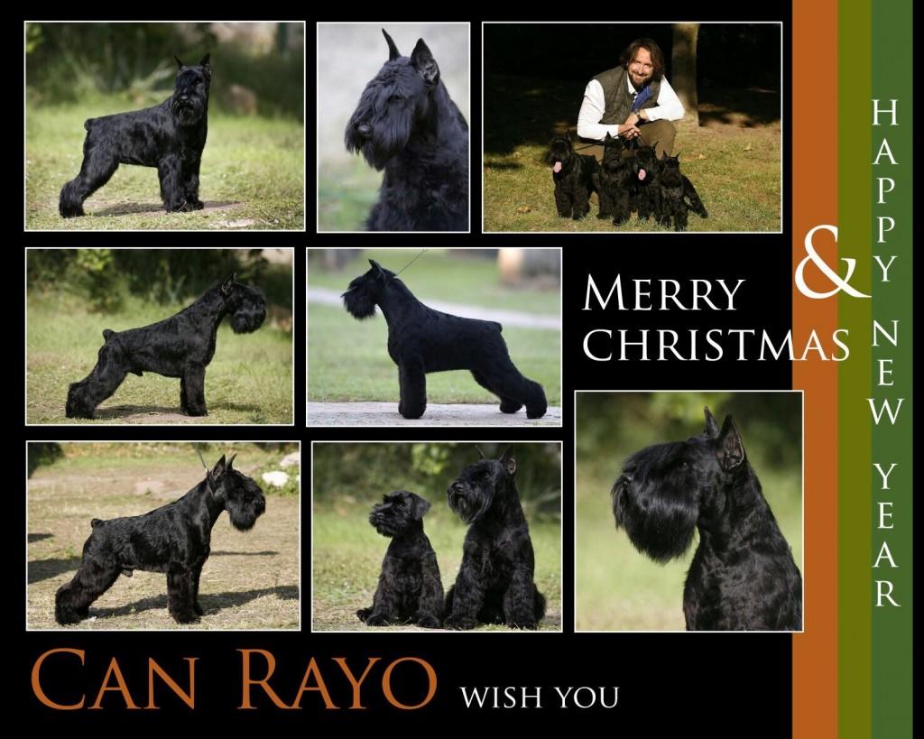 Can Rayo os desea Feliz Navidad 2015