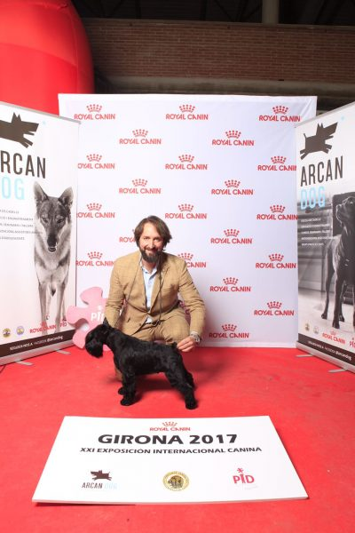 UZI Latoya del Casa di Vita (Can Rayo) en exposición internacional de Girona 2017