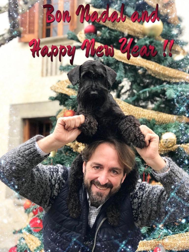 Can Rayo os desea Feliz Navidad y Feliz 2019