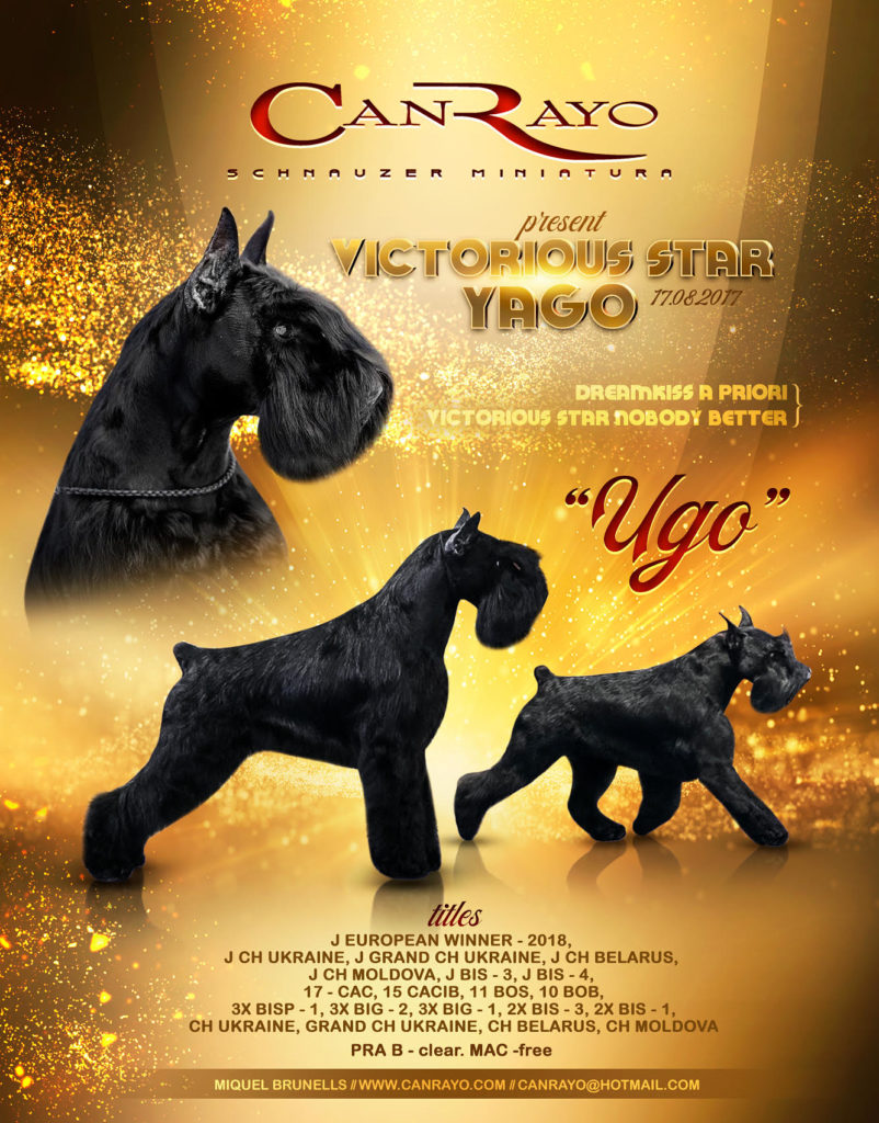 Victorious Star Yago - Ugo - Bienvenido a Can Rayo